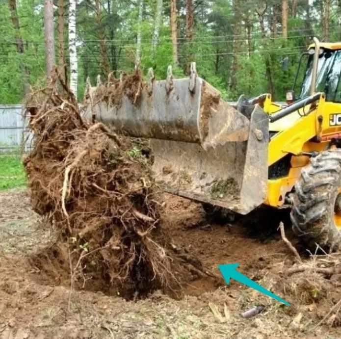 Очистка траншеи от корней