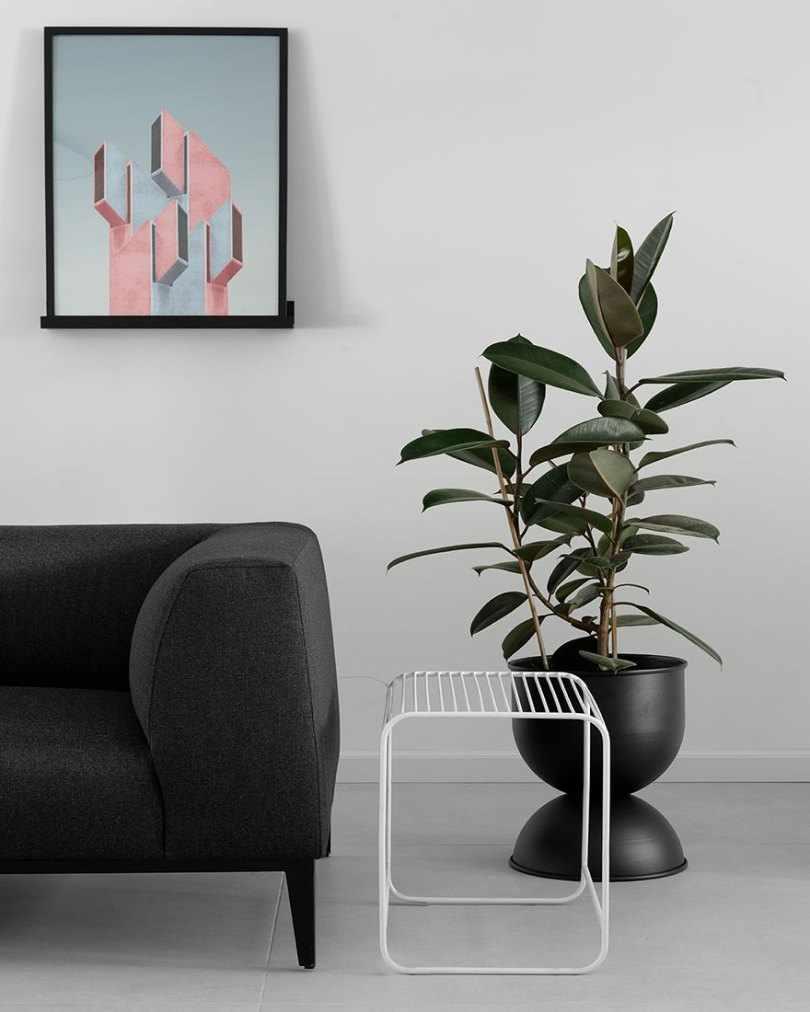 Серый диван и цветок в горшке