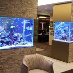 Перегородка с аквариумами