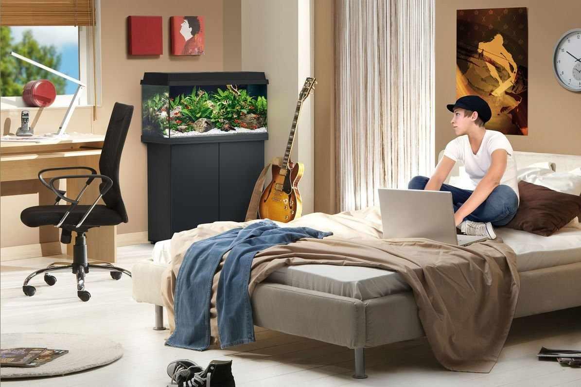 Аквариум в комнате подростка