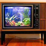 Телевизор-аквариум