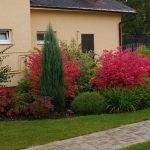 Цветник под стенами дома