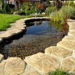 Камни вокруг водоема