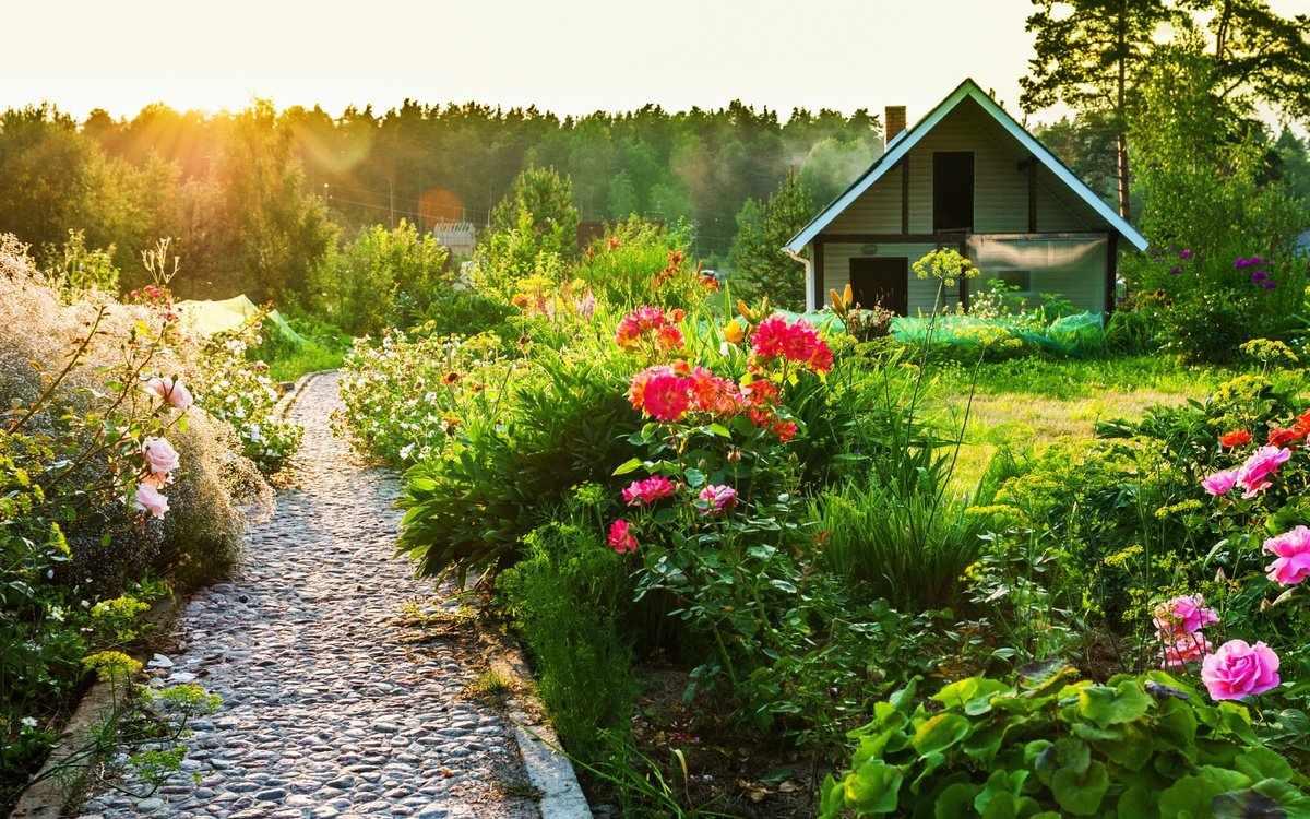 Дорожка среди цветников