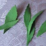 Вырезаем листочки размером от 3-7 см