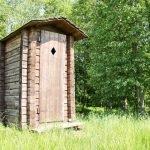 Туалет из бревен