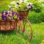 Велосипед с петуньями