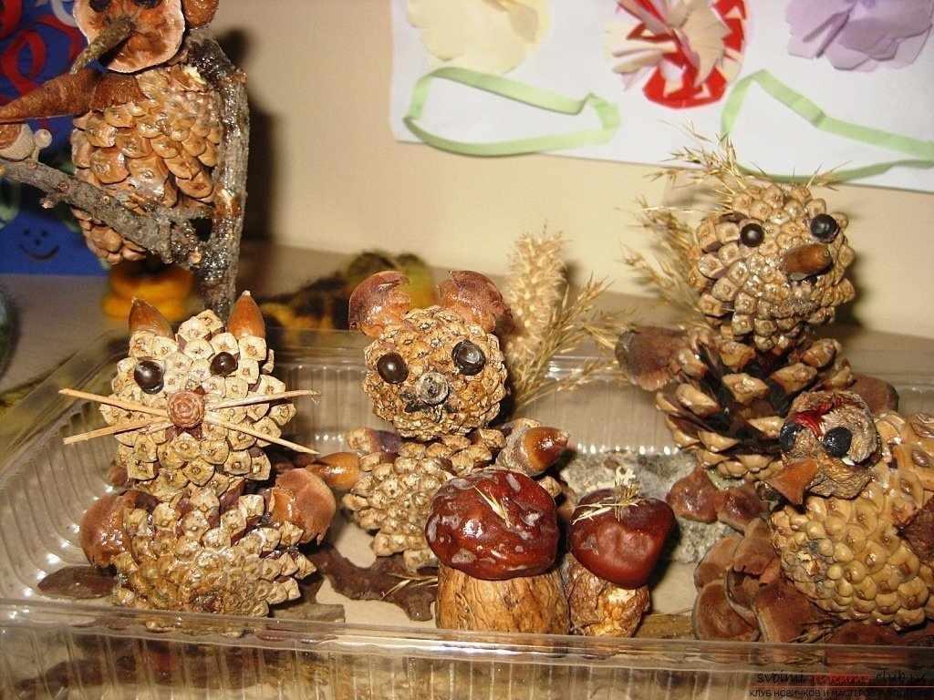 Декор из шишек и каштанов