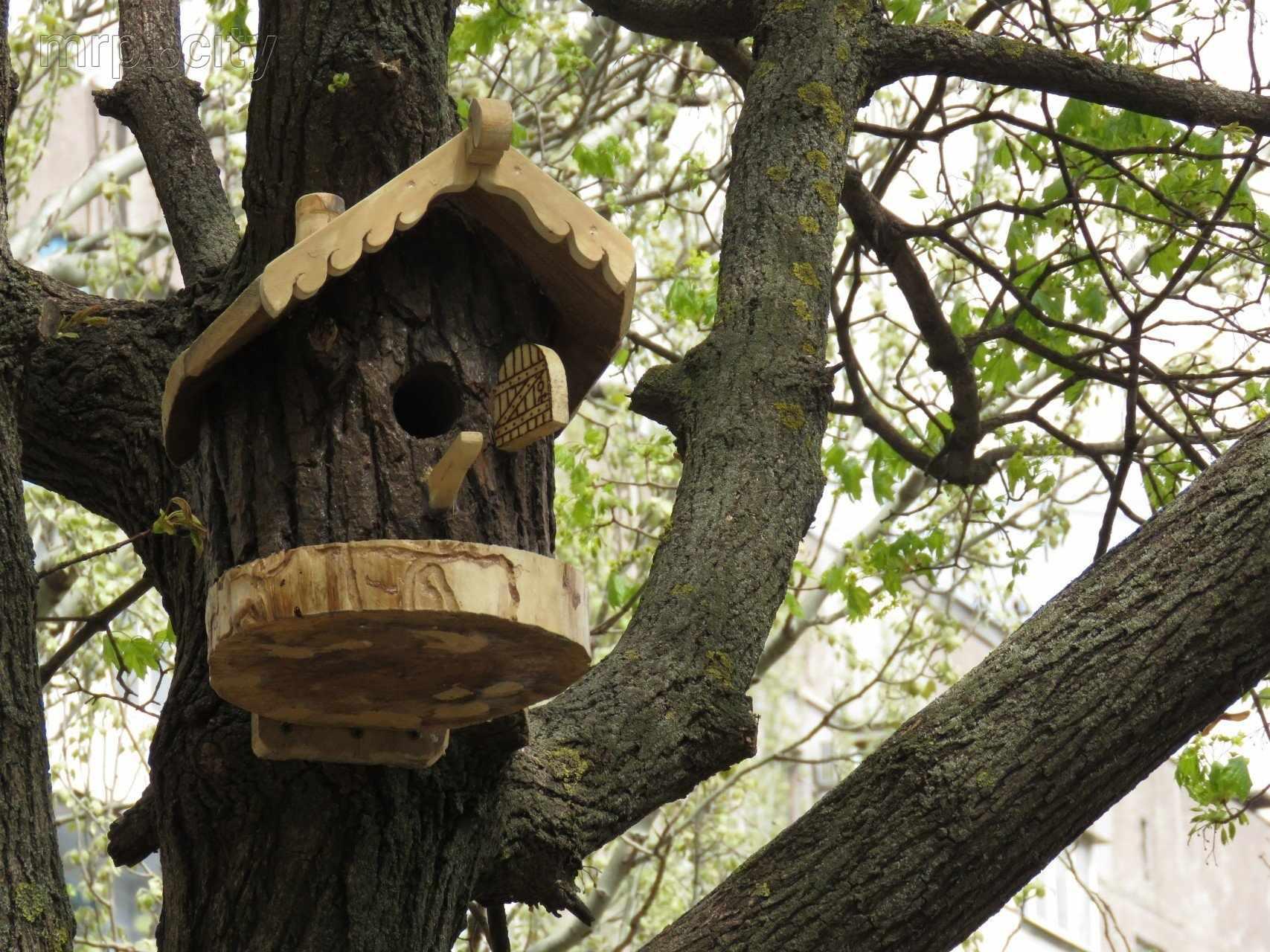 Скворечник на большом дереве