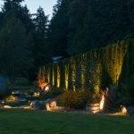 Подсветка растений во дворе