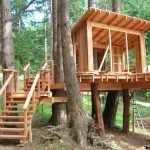 Сооружение на деревьях