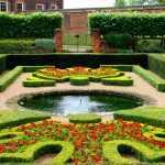Сад с яркими цветами