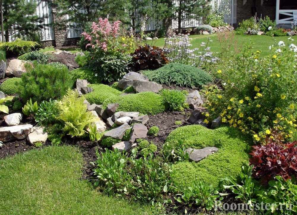 Камни и цветы в саду