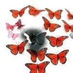 Красим цветных бабочек в один цвет