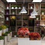 Полки с цветами вдоль стен