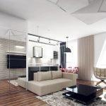 Большая квартира-студия