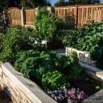 Многоярусный огород