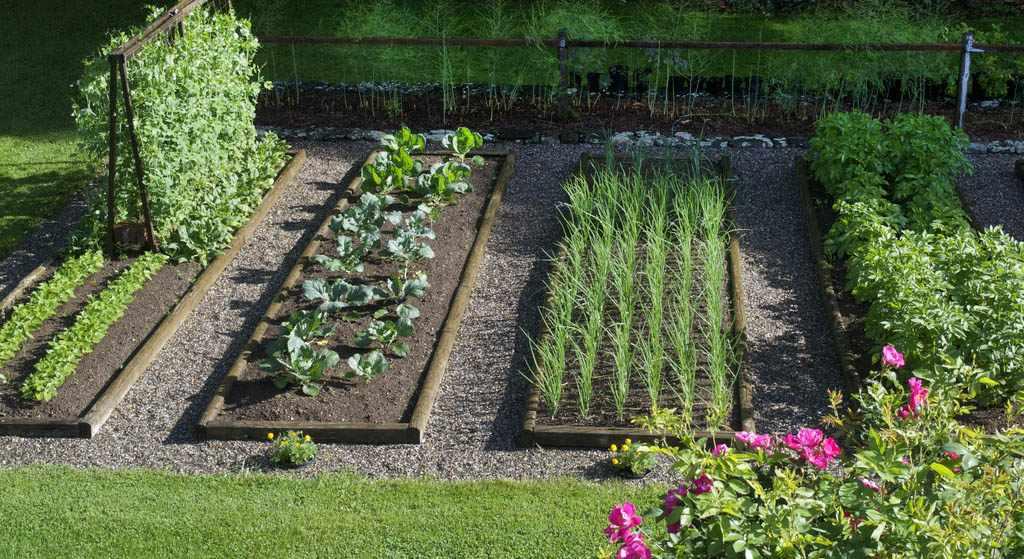 Дизайн большого огорода
