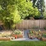 Мини-огород на даче