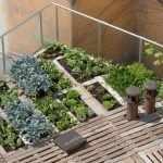 Огород на крыше дома