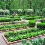 Зоны для посадки овощей