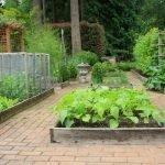 Ухоженная зона для посадки овощей