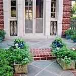 Горшки с цветами у входа