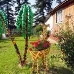 Пальма и жираф
