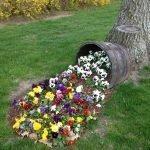 Кадка с цветами