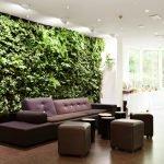 Зеленая стена за диваном
