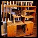Домик для кошки из старого шкафа