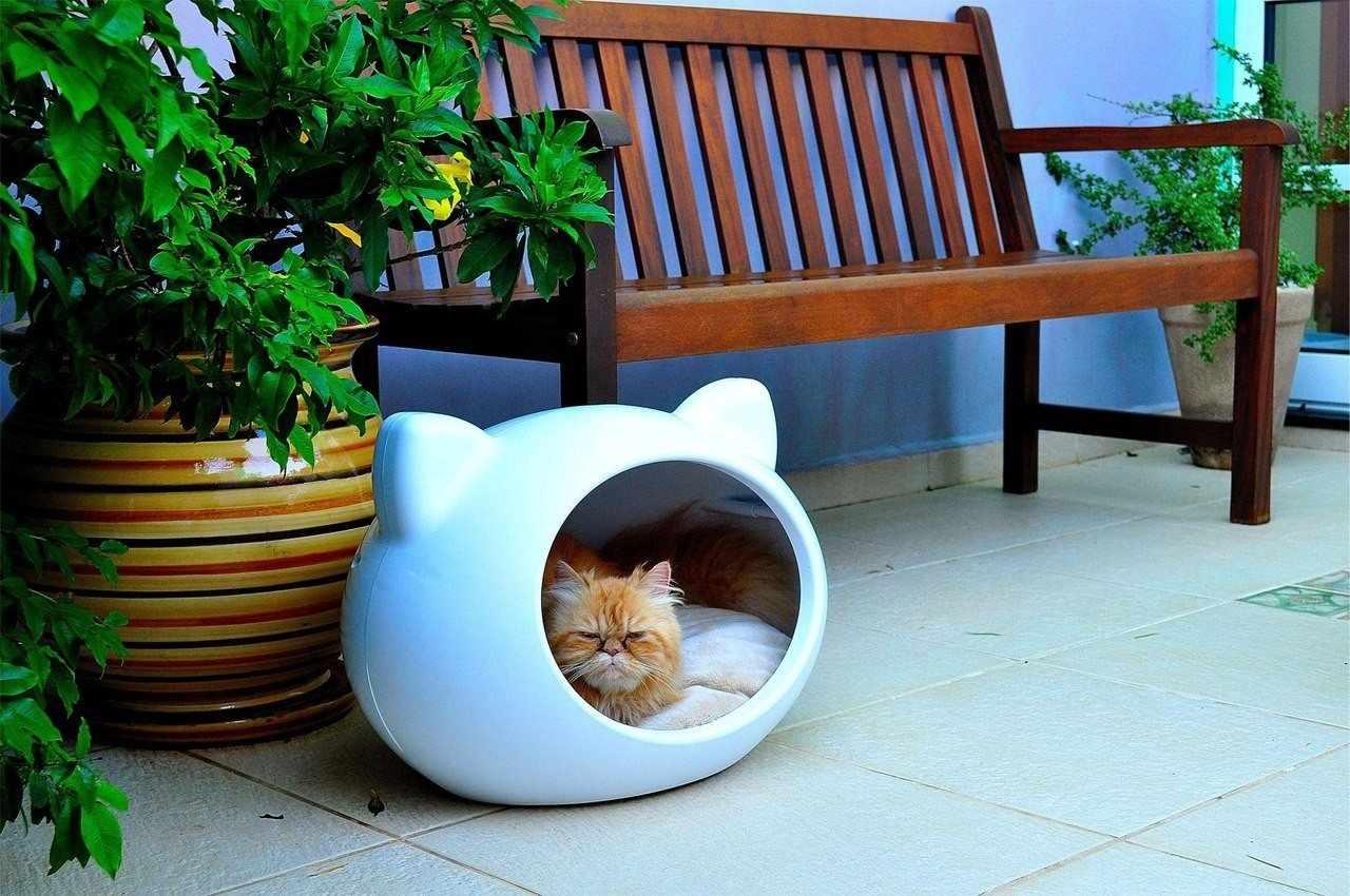 Белый дом для кошки из пластика