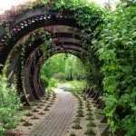 Дорожка с аркой