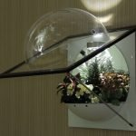Настенный флорариум