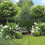 композиция с гортензиями в саду