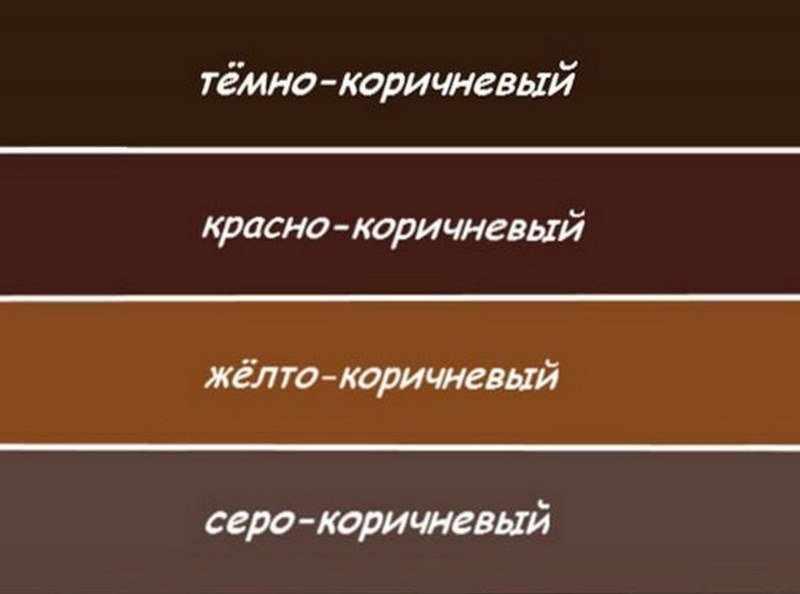 Оттенки коричневого цвета