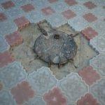 Плитка вокруг ямы