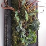 Картина с живыми растениями