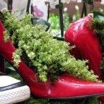 Кашпо из обуви
