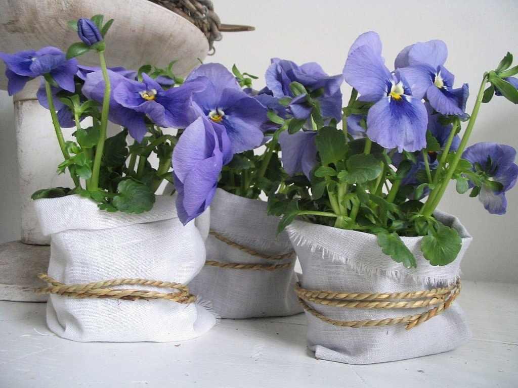 Оригинальные флористические кашпо