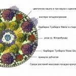 Схема круглой клумбы