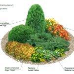 Схемы цветников из многолетников