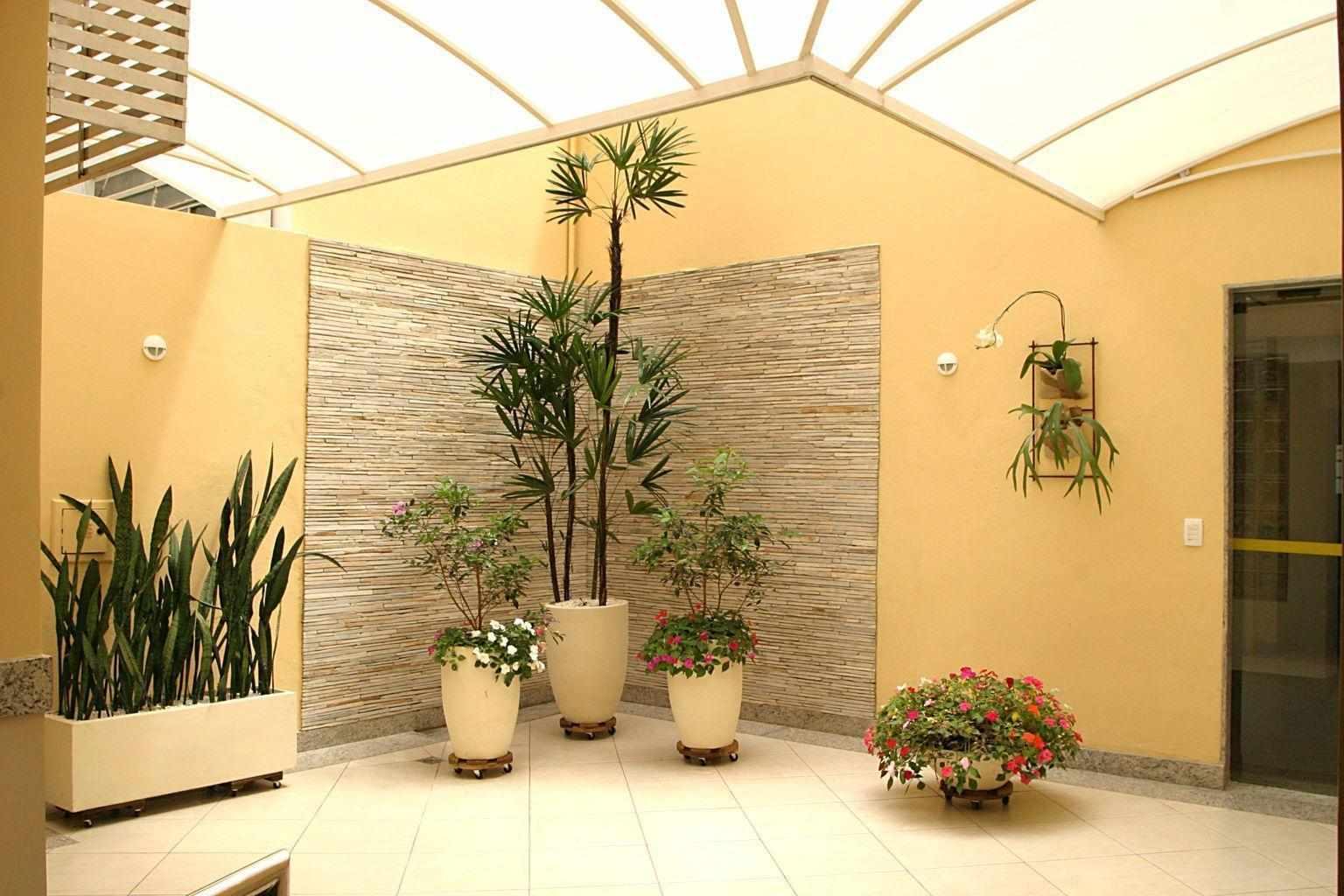 Комнатные растения в прихожей
