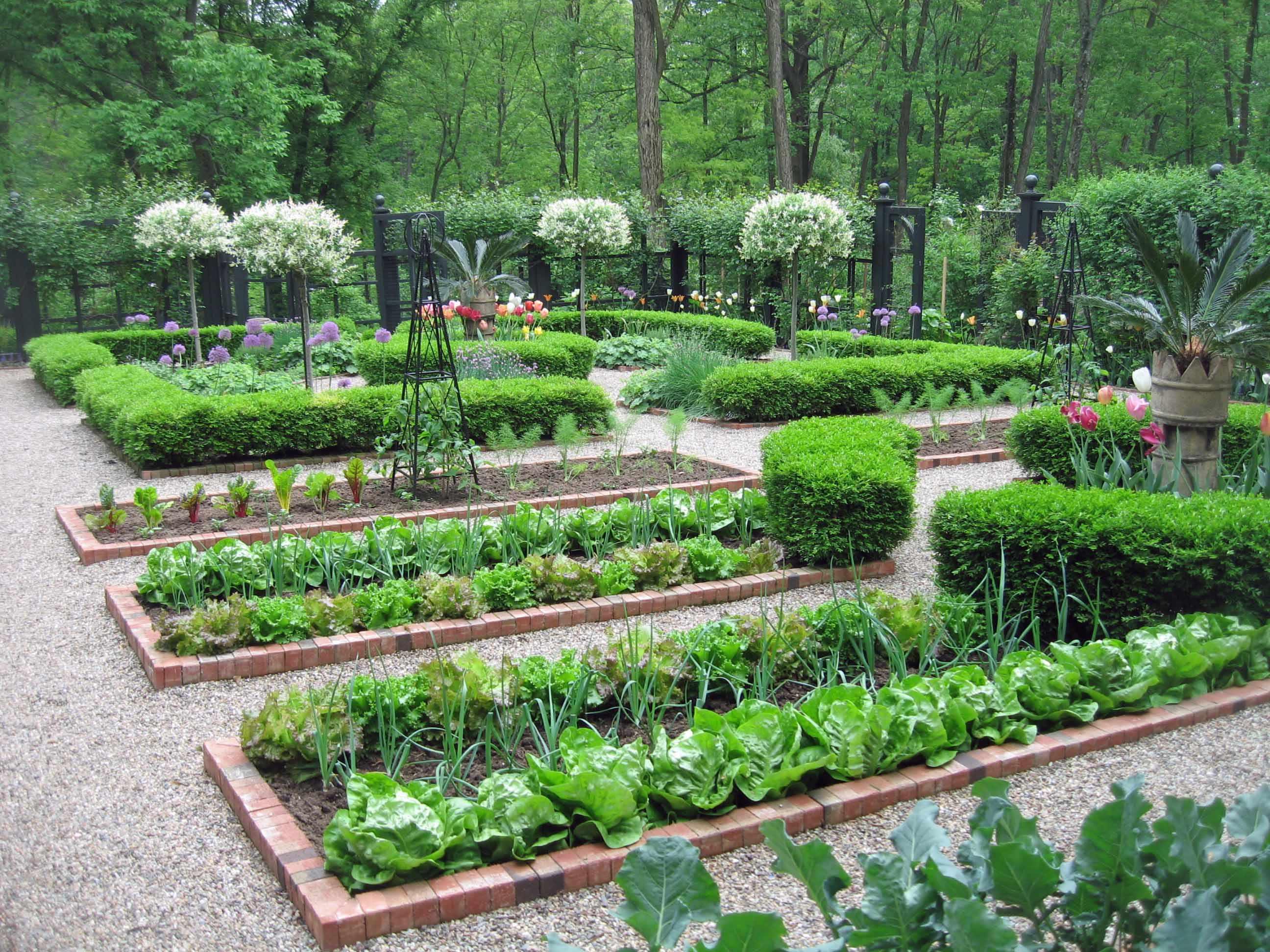 Оформление огорода на даче