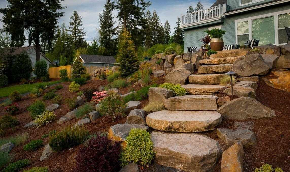 Декоративные кустарники среди камней