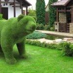 Кустарник в форме медведя
