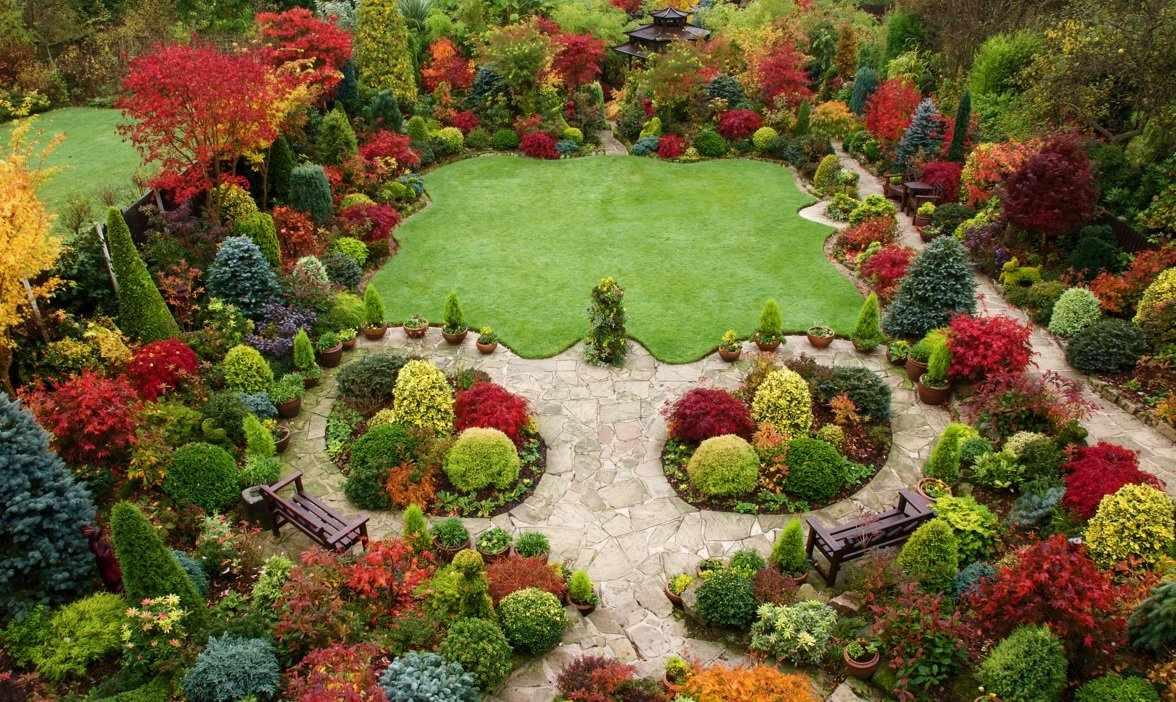 Деревья в дизайне сада