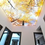 Потолок осень