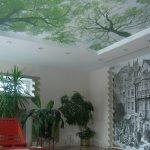 Натяжные потолки с фотопечатью с деревьями