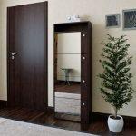 комнатное деревце в интерьере
